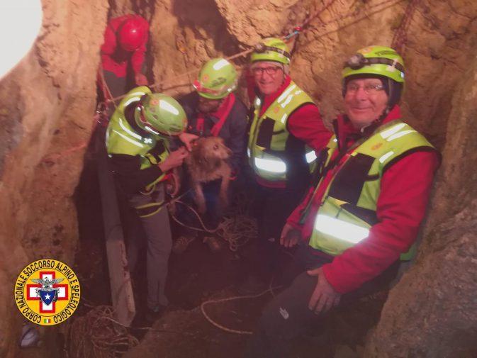 Animali, speleologi del Sass salvano cagnetta Lea: da domenica bloccata dentro una grotta