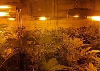 Belpasso e Trecastagni, marijuana coltivata e confezionata in due villette-laboratorio: Polizia arresta 6 persone (VIDEO e FOTO)