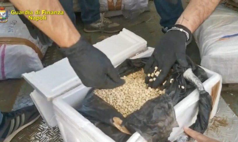 GdF sequestra a Salerno 14 tonnellate di 'droga dell'Isis ...