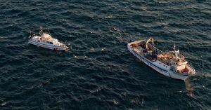 Catania, operazione della Guardia Costiera contro la pesca illegale di 'novellame di sarda': attrezzature sequestrate