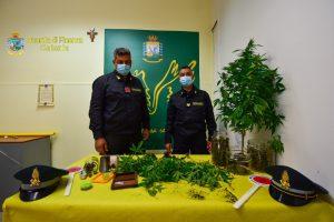 A Giarre e Sant'Alfio sequestro di marijuana: arrestato un catanese