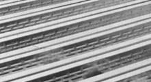 composite deck floor