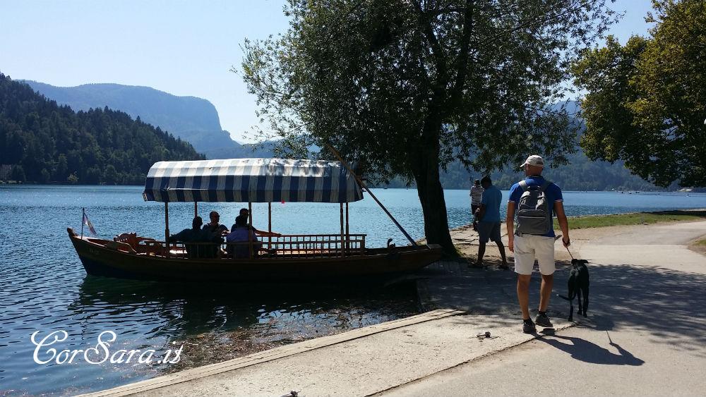 Una Platna sul lago di Bled