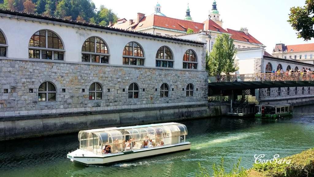 In navigazione sulla Ljubjanica.