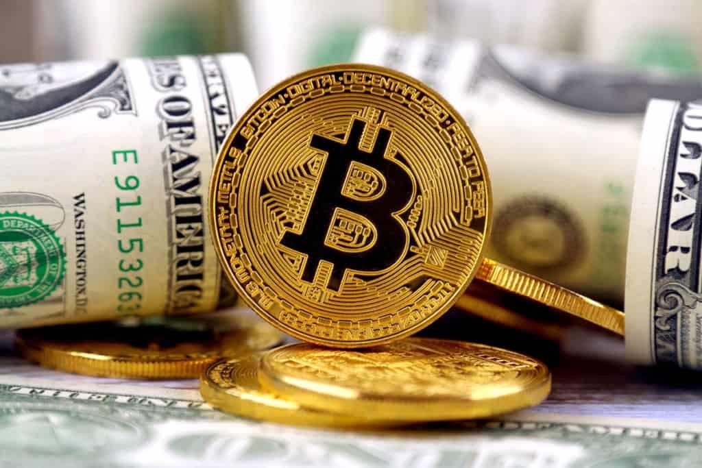 Viviendo en Bitcoin
