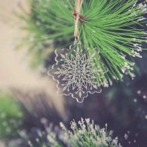 copo-de-nieve-grabado