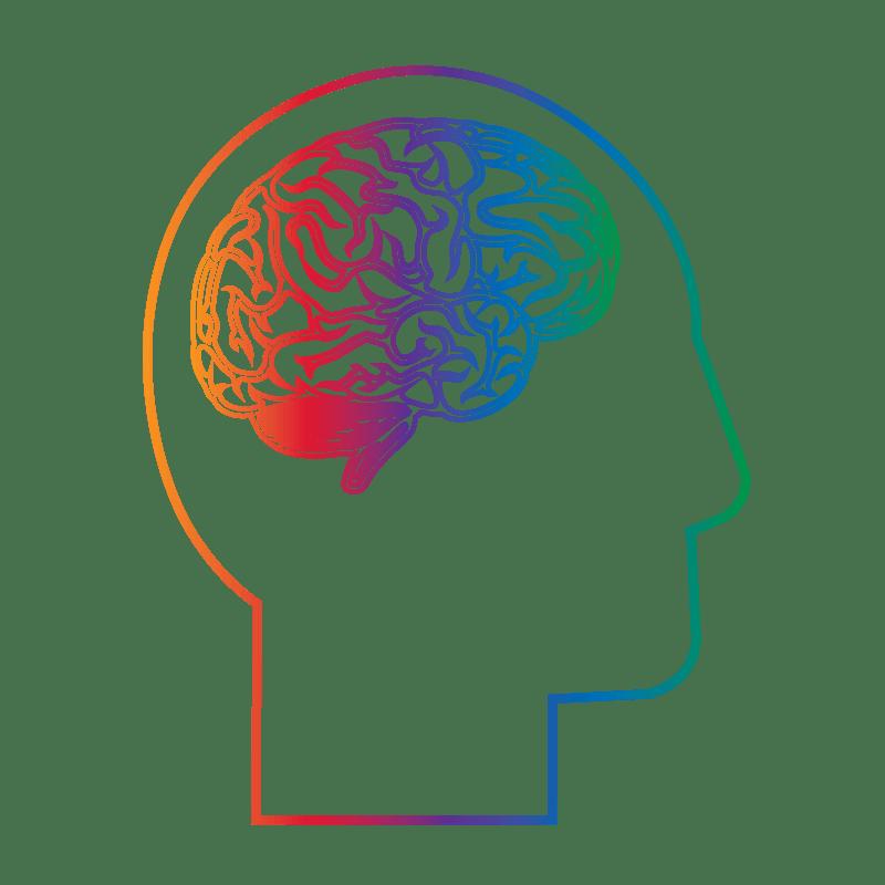NeuroQuant 3.0