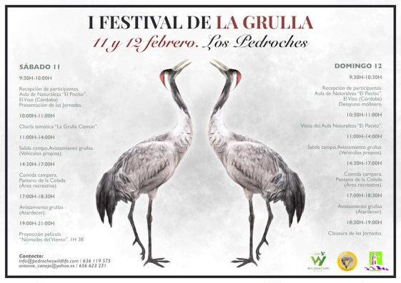 I Festival de la Grulla
