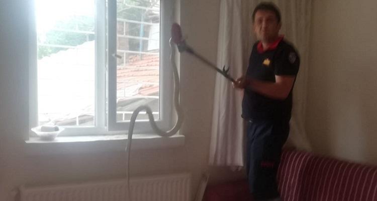 Çorum'da eve giren yılan korkuttu!