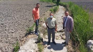 Kargı'da çeltik arazileri susuz kaldı