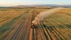 Çorum tarımına 25 milyon lira destek