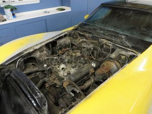 1981 Corvette Engine Bay