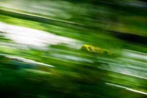 Corvette Racing C7.R Road America