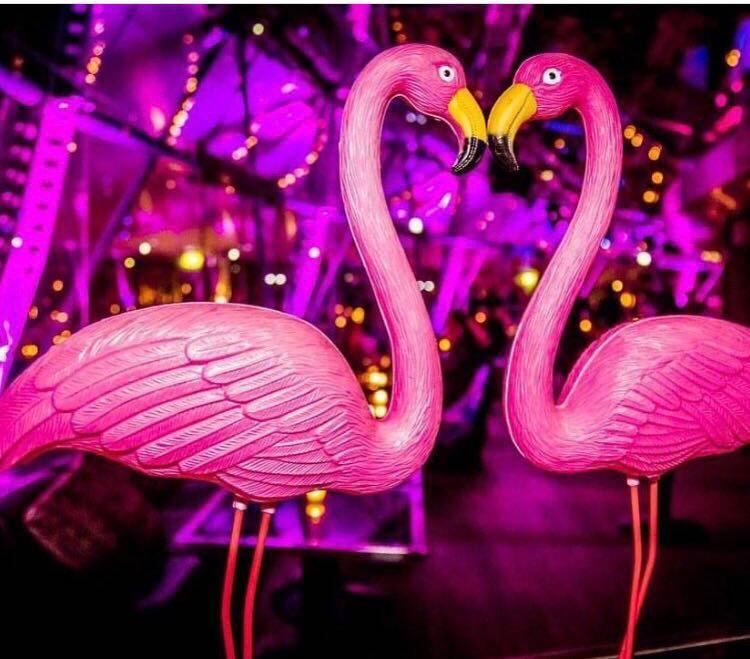 Fuorisalone 2018 – Degustazione di Vini Argentini & Flamingo Design