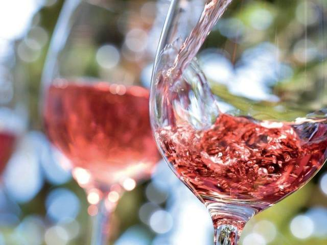 Calici di Vino Rosè in Parco Sempione con Royal Buffet