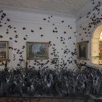 Mostra alla Fondazione Pini – Migliaia di farfalle nere
