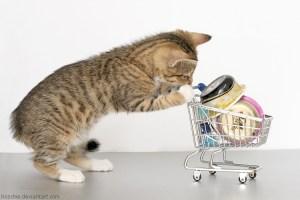 Comida de gato | Foto de http://hoschie.deviantart.com/