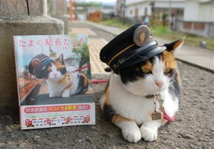 La gata Tama luce su gorrito de jefa de estación | Foto: http://www.japonpop.com