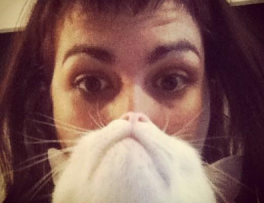 Kato participando en la moda del gato barba