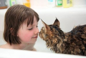 Gata y niña bañándose | Foto: http://irisgracepainting.com/