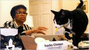 Socks fue adoptado por la ex secretaria de Clinton y vivió con ella hasta su muerte, un 20 de febrero