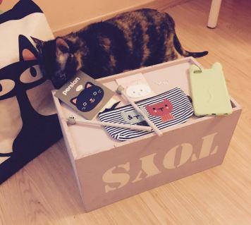 Sorteo Cosas de Gatos pack completo con Conxa mirando