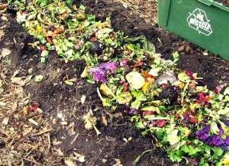 como hacer compost enterrando los deshechos de cocina en el jardin