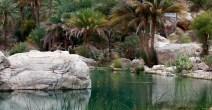 viaggi-esperienziali-immersi-nella-natura-14
