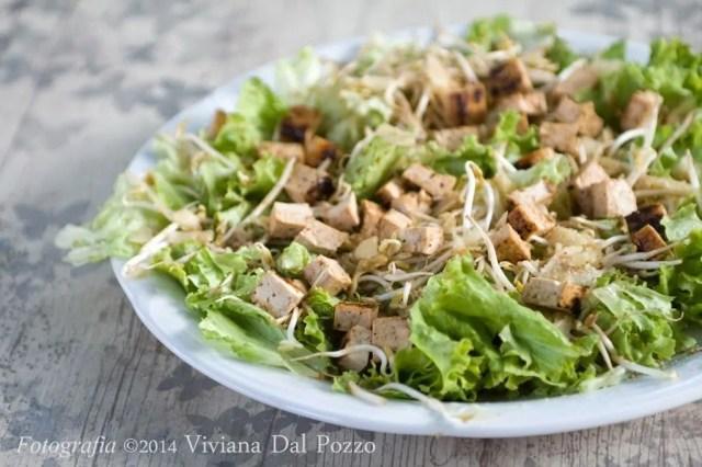 insalata tofu e germogli