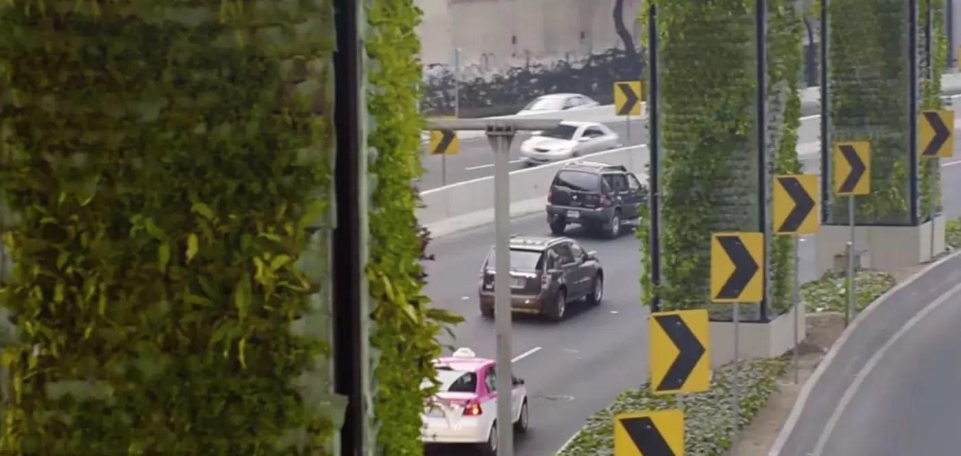 Per depurare l'aria la Città del Messico sta convertendo i pilastri autostradali in giardini verticali