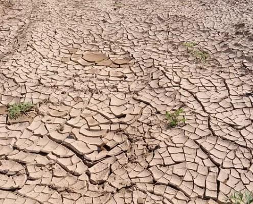terra siccita