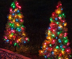 christmas-walkway-trees