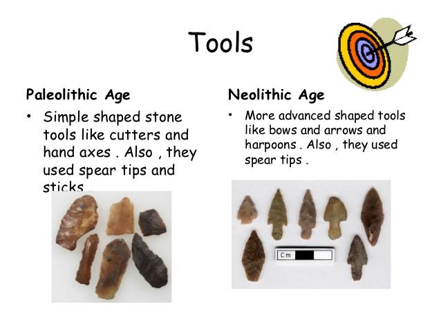 Prehistory Test