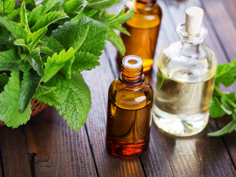 Aromatherapy Focus – Peppermint Oil