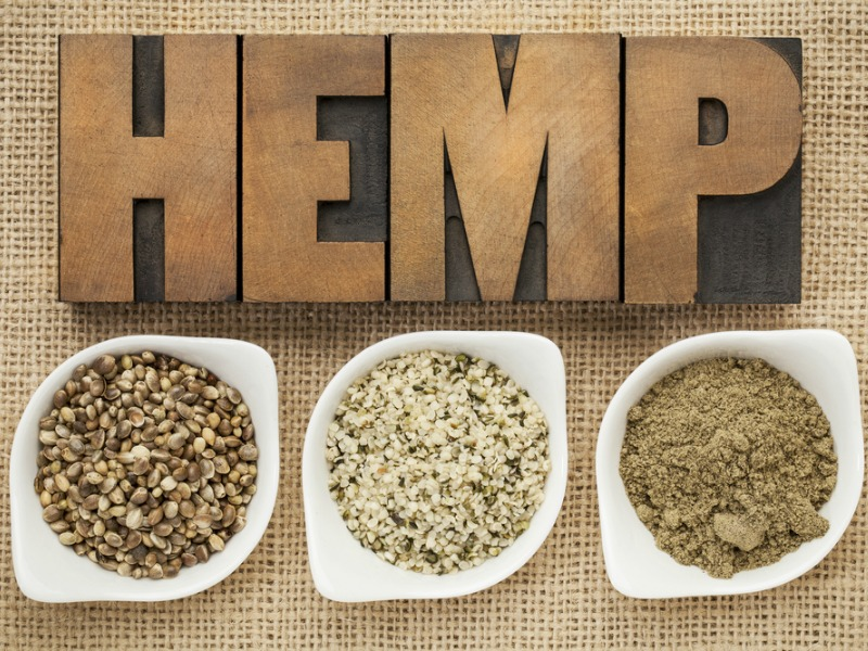 Hemp Seeds – Super Food Focus