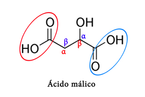 Cómo un hidroxiácido puede ser alfa o beta