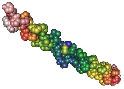 Resultado de imagen de colageno proteina
