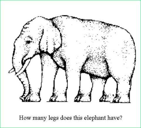 elephant-illusion.jpg