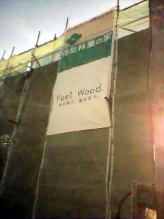 20050417-01feel-wood.jpg