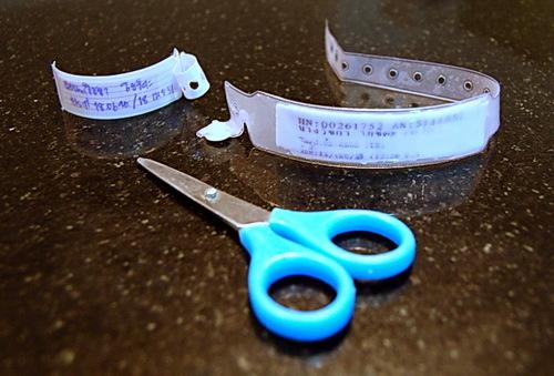 20080424max0200.jpg