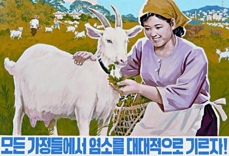 ess_north_korean_39-460.jpg