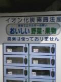 1127952198veg-vender_001.jpg