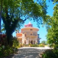 On a walk... Palácio de Monserrate
