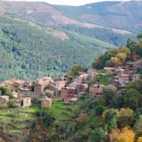 Talasnal, a aldeia dos gatos