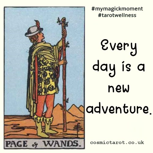 page of wands every day is a new adventure