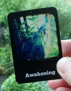 cosmic journaling oracle awakening