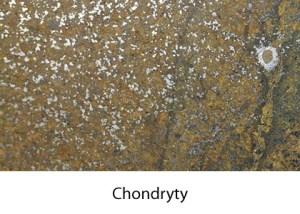 Galeria chondryty