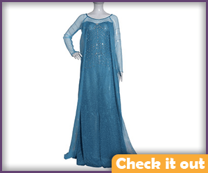 Elsa Costume Blue Dress.