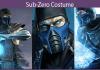 Sub-Zero Costume