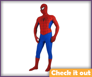 Spider-man Classic Outfit.